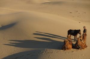 die Ruhe der Wüste