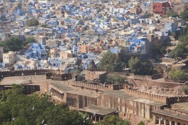 Jodhpur in blau