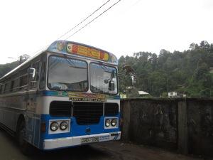Affe auf Bus-Außenspiegel