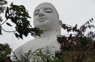 Buddha schaut drauf