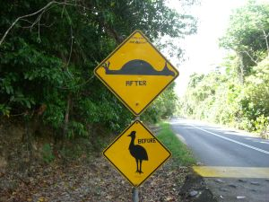 lustiges Vogel-Warnschild in Australien