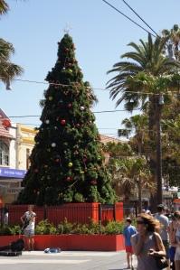 Weihnachten mit Straßenmusikant