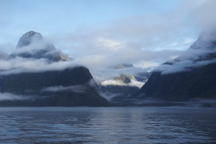 Morgennebel im Milford Sound
